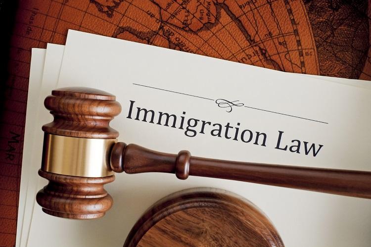 Immigration Attorney